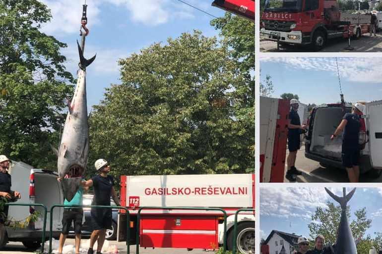 Rekord: 280 kilós tonhalat fogtak a horvát Adrián!